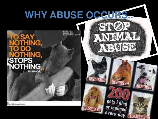 essays on cruelty to animals Find animal cruelty example essays, research papers, term papers, case studies or speeches animal cruelty is any act of violence or neglect against an anima.