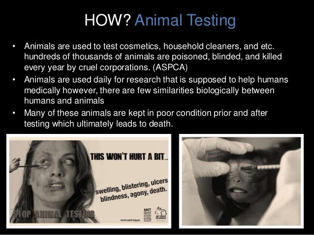 how the description of animal cruelty changed over the years From this, societies agreed to meet once every two years, on a rotational basis,   initial movement in 1871, the rspca has fought relentlessly against animal  cruelty it has witnessed dramatic and positive change in the way that animals are .