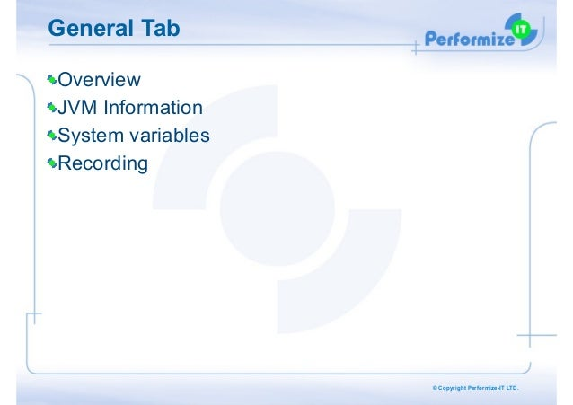 General Tab Overview JVM Information System variables Recording  © Copyright Performize-IT LTD.