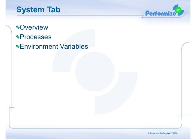 System Tab Overview Processes Environment Variables  © Copyright Performize-IT LTD.