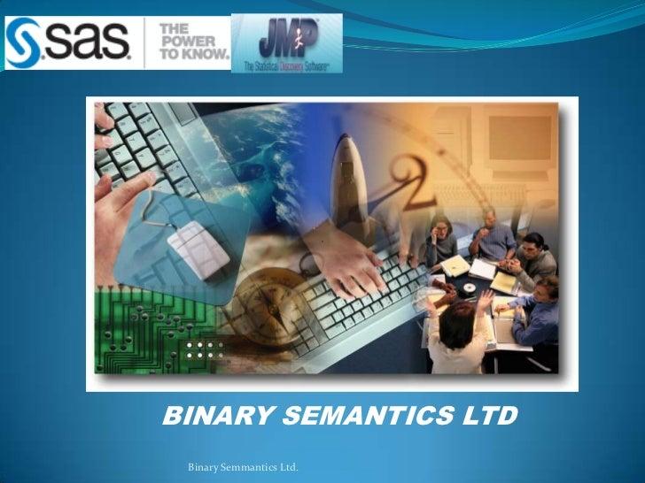 BINARY SEMANTICS LTD<br />Binary Semmantics Ltd.<br />