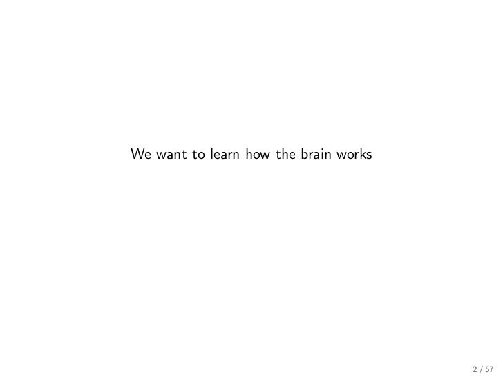 We want to learn how the brain works                                       2 / 57