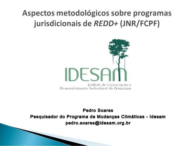 Pedro Soares Pesquisador do Programa de Mudanças Climáticas - Idesam pedro.soares@idesam.org.br