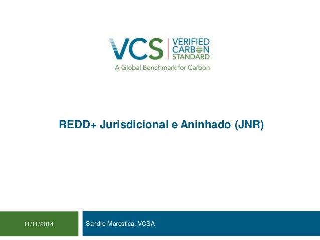 REDD+ Jurisdicional e Aninhado (JNR)  Sandro Marostica, VCSA 11/11/2014