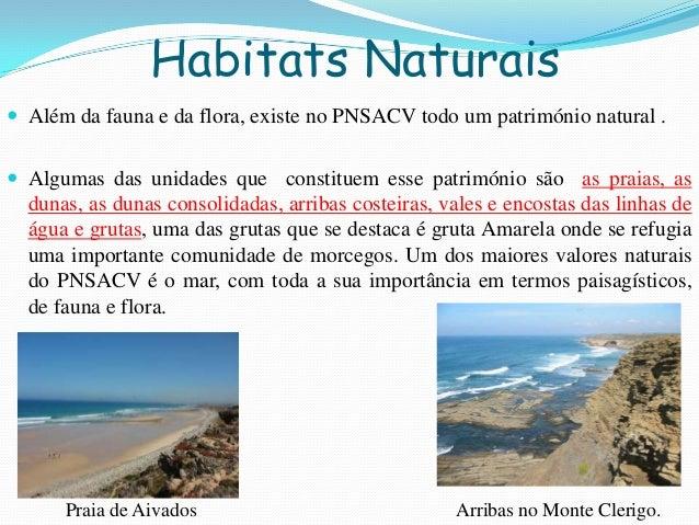 Habitats Naturais Além da fauna e da flora, existe no PNSACV todo um património natural . Algumas das unidades que const...