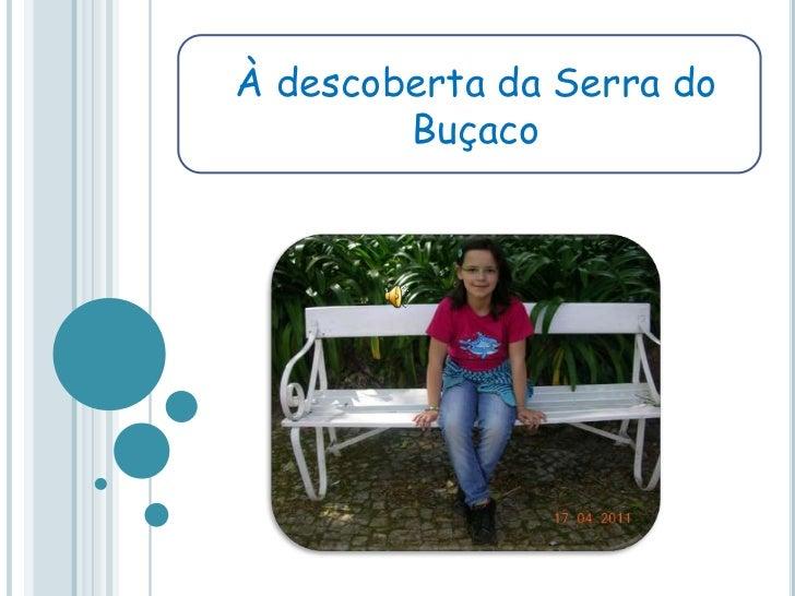 À descoberta da Serra do Buçaco<br />