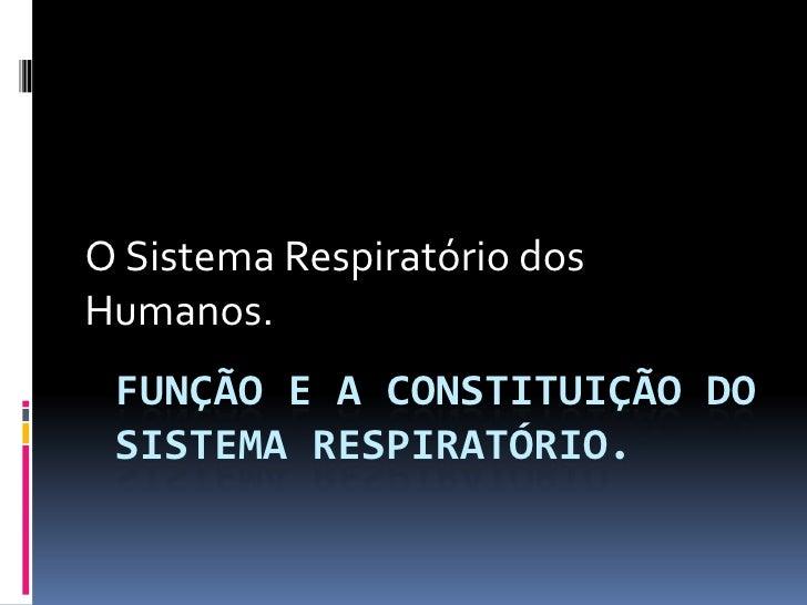 Sistema Respiratório Humano<br />Função e constituição<br />