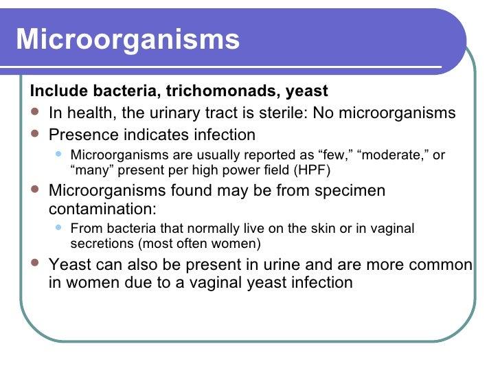 Microorganisms <ul><li>Include bacteria, trichomonads, yeast </li></ul><ul><li>In health, the urinary tract is sterile: No...