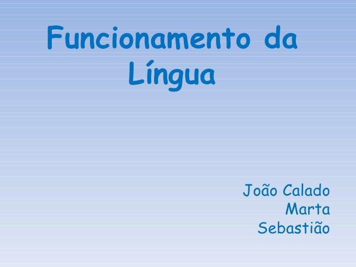 Funcionamento da Língua João Calado Marta Sebastião