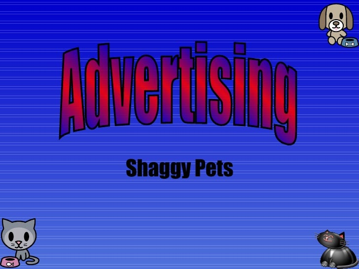 Shaggy Pets Advertising