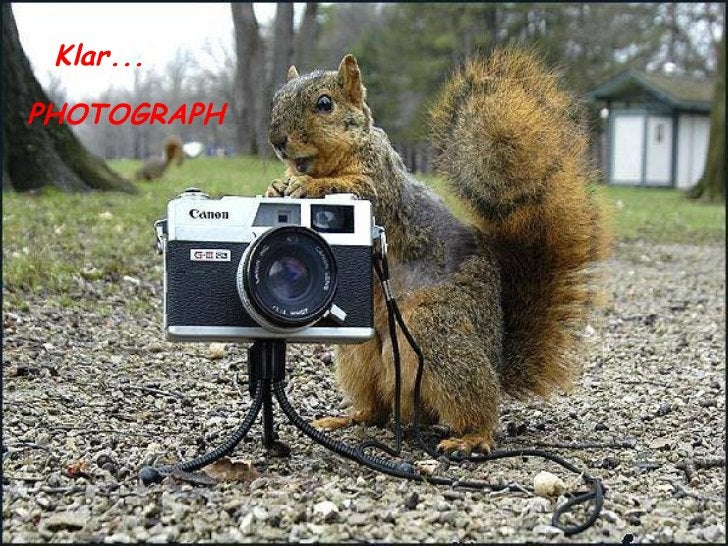 Klar... PHOTOGRAPH
