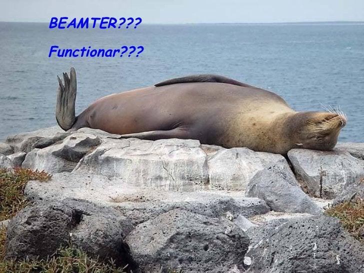 BEAMTER??? Functionar???
