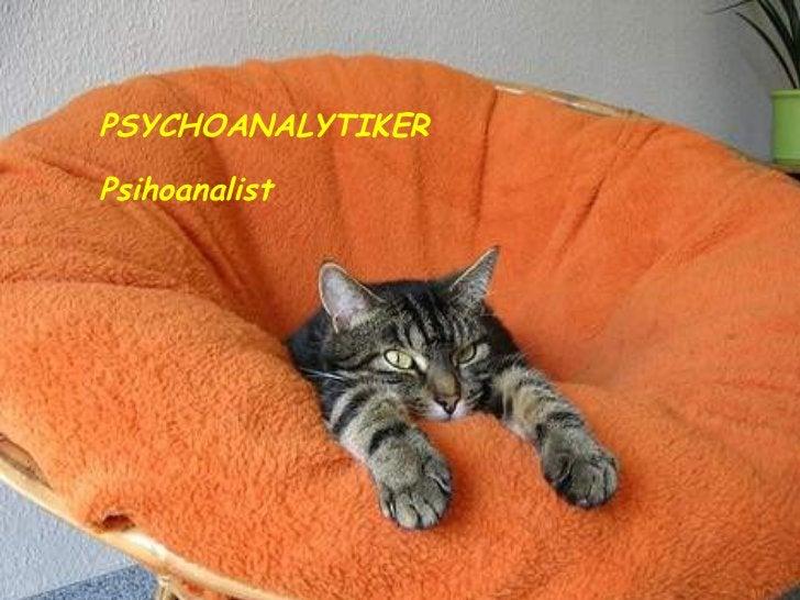 PSYCHOANALYTIKER Psihoanalist