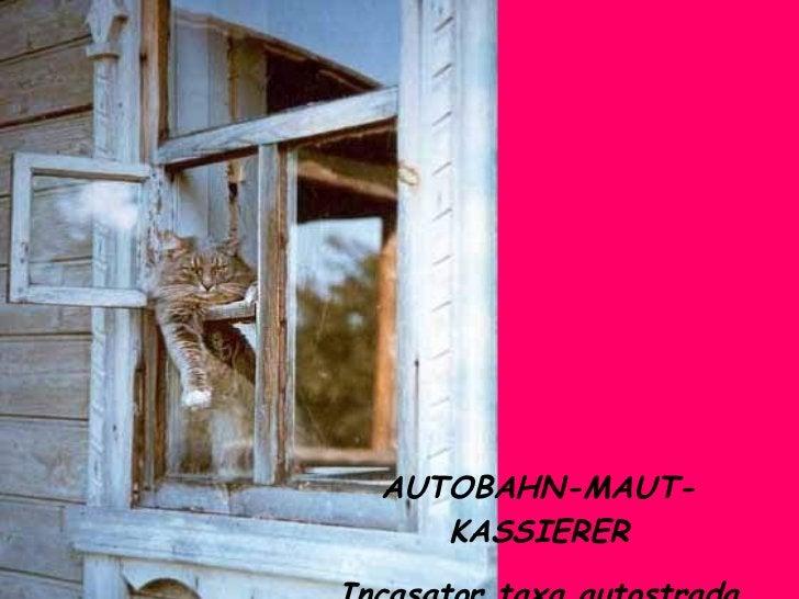 AUTOBAHN-MAUT-KASSIERER Incasator taxa autostrada
