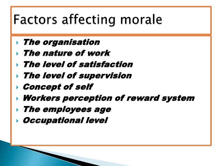factors affecting job satisfaction by the