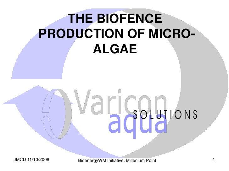 THE BIOFENCE           PRODUCTION OF MICRO-                 ALGAE     JMCD 11/10/2008                                     ...