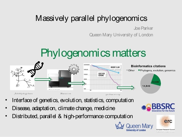 Massively parallel phylogenomics  Joe Parker  Queen Mary University of London  Phylogenomics matters  flickr/ste phe njjo ...