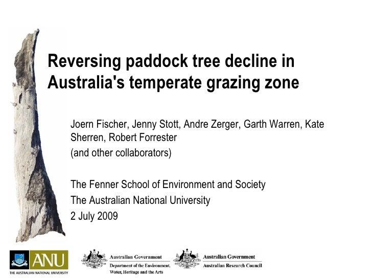 Tree regeneration, Fenner School July 2009