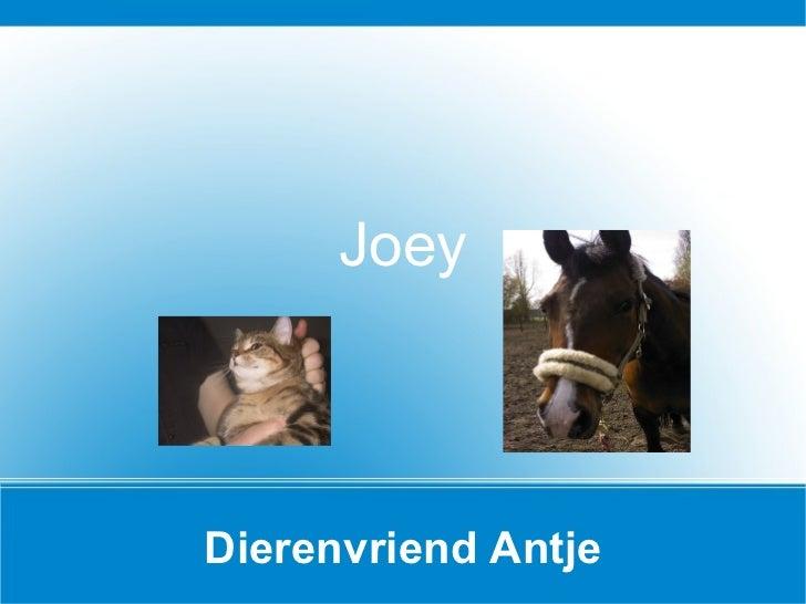 Dierenvriend Antje Joey
