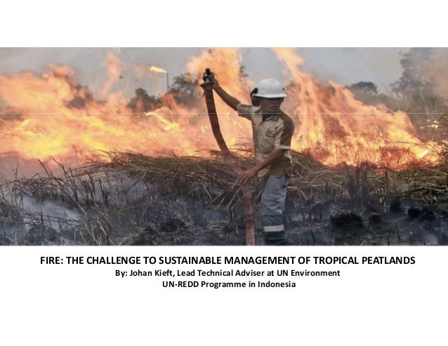 FIRE: THE CHALLENGE TO SUSTAINABLE MANAGEMENT OF TROPICAL PEATLANDS By: Johan Kieft, Lead Technical Adviser at UN Environm...