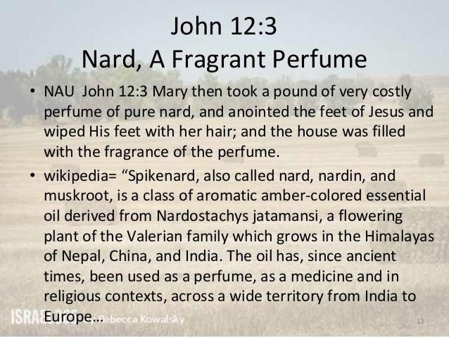 Alien Essence Absolue Mugler perfume - a fragrance for ...