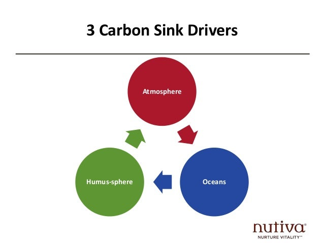 What do we do?  Grow or purchase Organic  Stop our addiction to Nitrogen Fertilizer  Reduce meat/dairy consumption by 50%+...