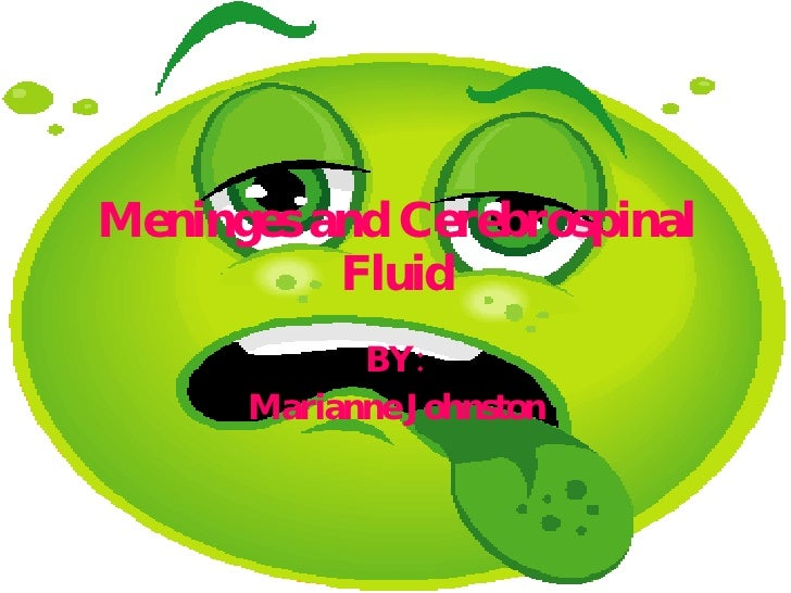 Meninges and Cerebrospinal Fluid BY: Marianne Johnston