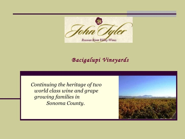 Continuing the heritage of two world class wine and grape growing families in  Sonoma County.   Bacigalupi Vineyards