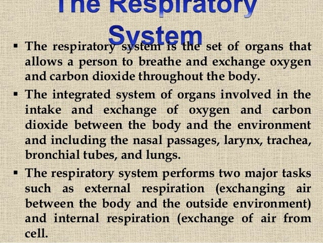 The Respiratorysystem Prepared By: Mr. Johny Kutty Joseph Asstt. Professor,  SMVDCoN; 2.