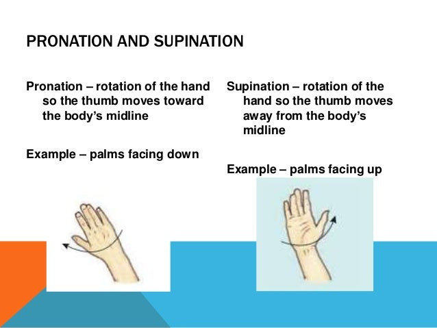 Joint actions and movement