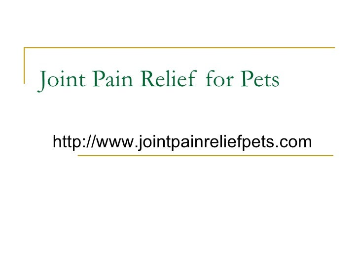 Joint Pain Relief for Pets http://www.jointpain reliefpets.com