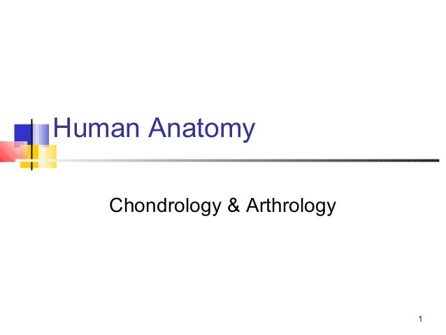 1 Human Anatomy Chondrology & Arthrology
