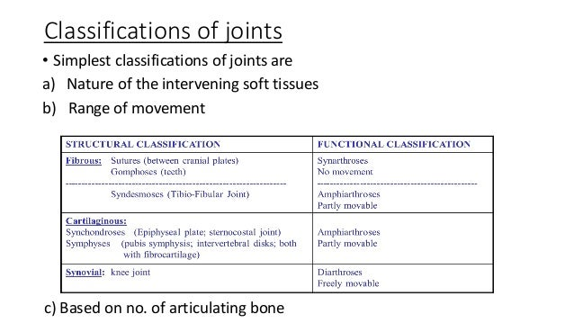 Joints on 4 Parts Of A Synovial Joint