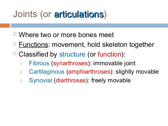 Anatomy & Physiology Lecture Notes - Joints