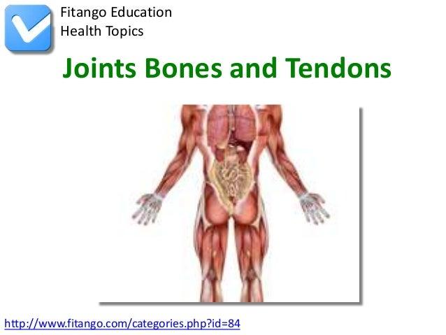 Fitango Education          Health Topics          Joints Bones and Tendonshttp://www.fitango.com/categories.php?id=84
