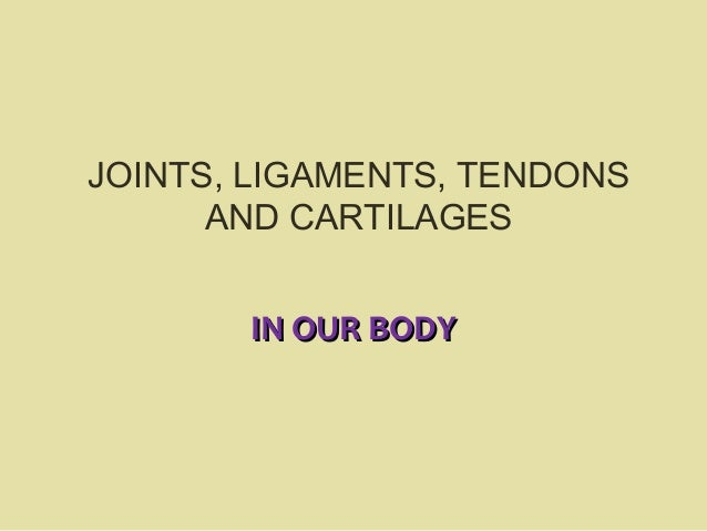 JOINTS, LIGAMENTS, TENDONS      AND CARTILAGES       IN OUR BODY