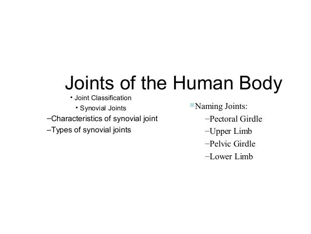 Joints of the Human Body • Joint Classification • Synovial Joints  –Characteristics of synovial joint –Types of synovial j...