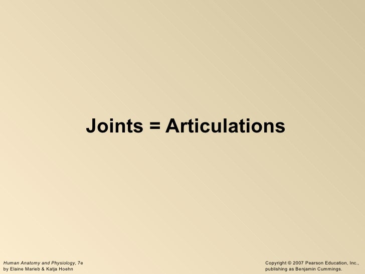 Joints = Articulations