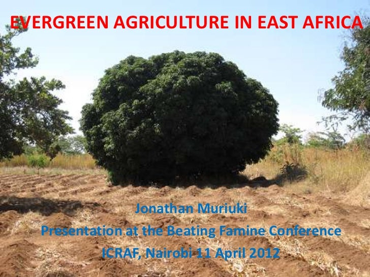 EVERGREEN AGRICULTURE IN EAST AFRICA                 Jonathan Muriuki   Presentation at the Beating Famine Conference     ...