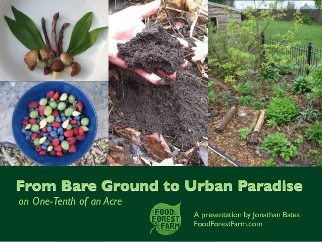 A presentation by Jonathan Bates FoodForestFarm.com From Bare Ground to Urban Paradise on One-Tenthof an Acre