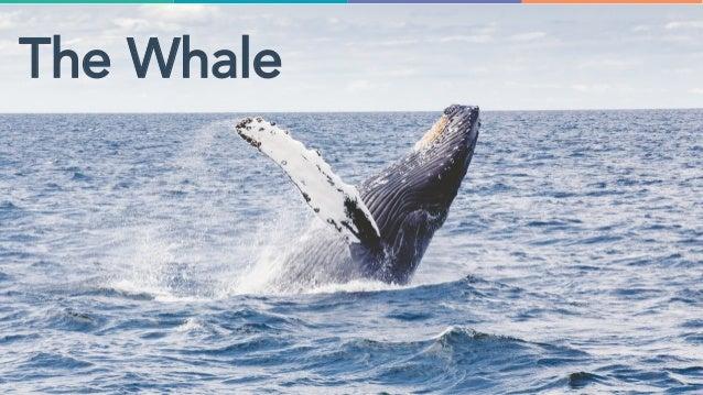 @jondick#INBOUND18 The Whale