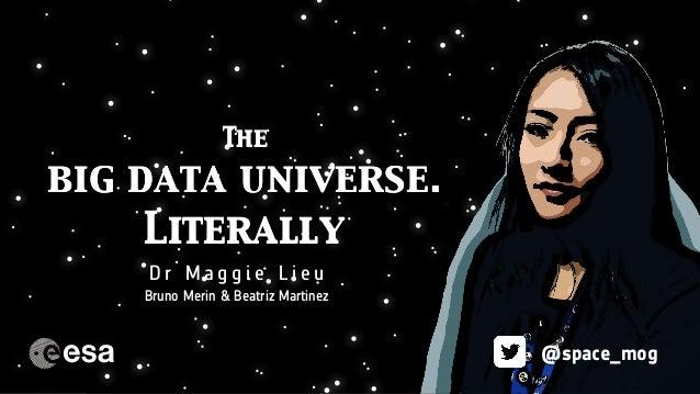 The Dark Matter Mystery The big data universe. Literally D r M a g g i e L i e u @space_mog The big data universe. Literal...