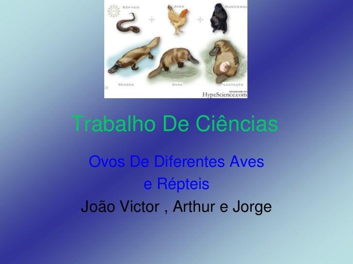 Trabalho De Ciências  Ovos De Diferentes Aves          e Répteis João Victor , Arthur e Jorge