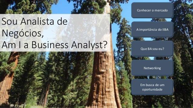 Sou Analista de Negócios, Am I a Business Analyst? Que BA sou eu? A importância do IIBA Em busca de um oportunidade Networ...