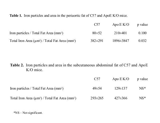 Table 1. Iron particles and area in the periaortic fat of C57 and ApoE K/O mice. C57 Apo E K/O p value Iron particles / To...