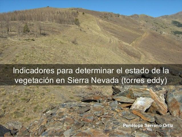 Indicadores para determinar el estado de la vegetación en Sierra Nevada (torres eddy)                              Penélop...