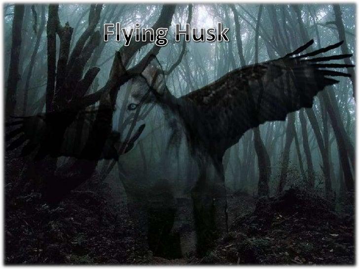 Flying Husk<br />