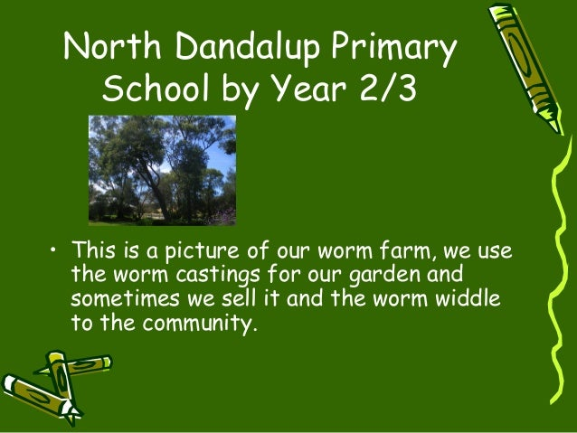 North Dandalup Primary School by Year 2/3 • This is a picture of our worm farm, we use the worm castings for our garden an...