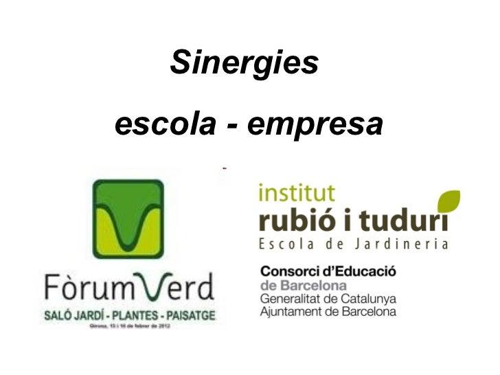 Sinergies  escola - empresa