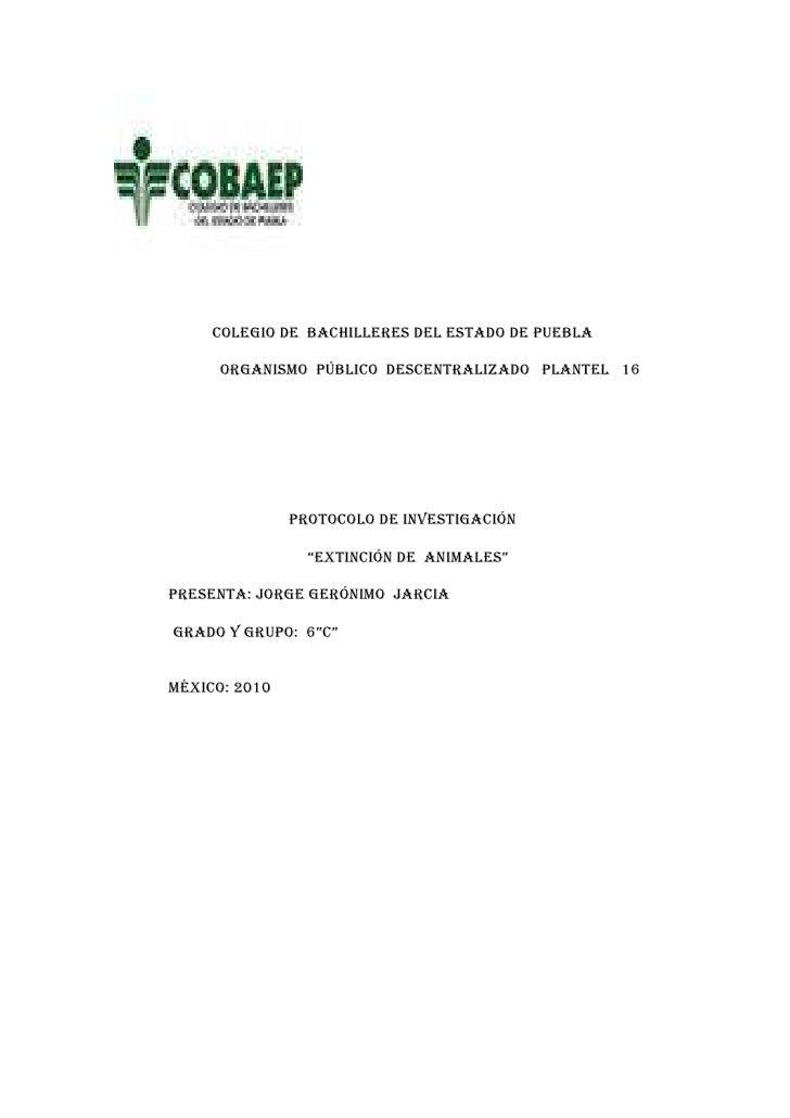 Colegio de  bachilleres del estado de puebla<br />                           Organismo  público  descentralizado   plantel...